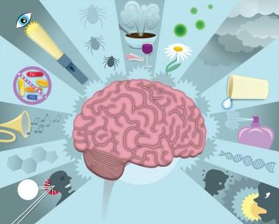 Migraine - Symptoms, Treatment & Clinical Trials